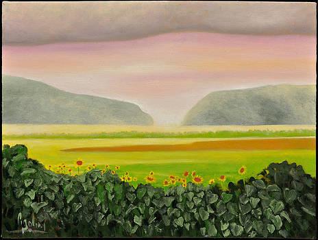 Morning Sunflowers by Gloria Cigolini-DePietro