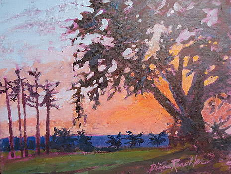 Morning Sunrise by Diane Renchler