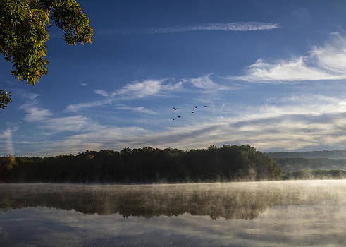 Morning by Tim Fitzwater