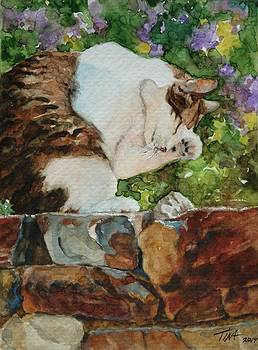 Morning Wash by Tina Welter
