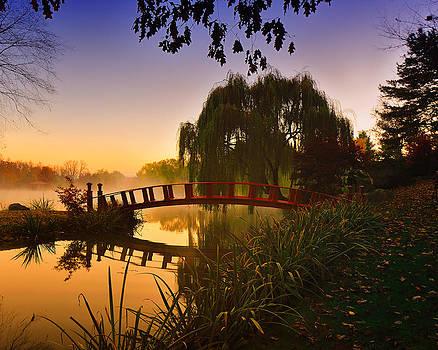 Mornings mist by Dick Wood