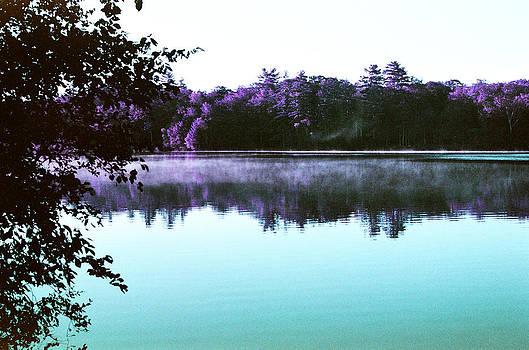 Mornings on the Lake by Lon Casler Bixby