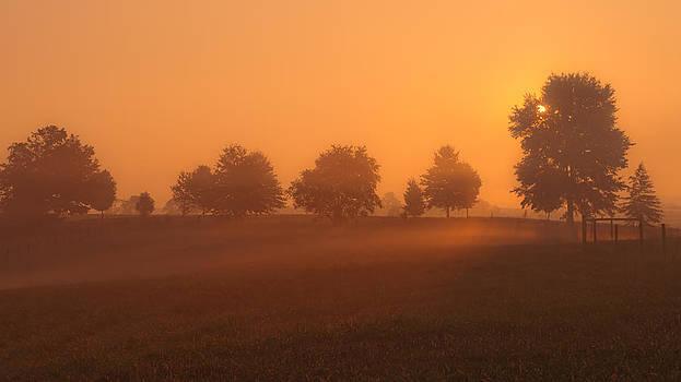 Morning's veil. by Jawaharlal Layachi