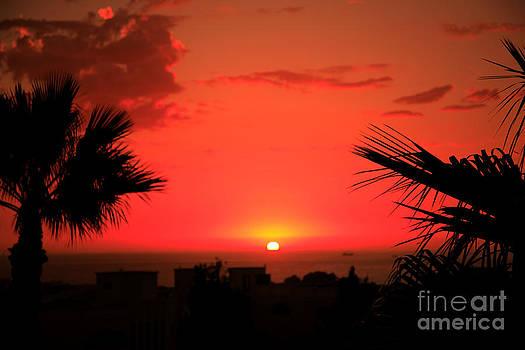 Deborah Benbrook - Moroccan sunset