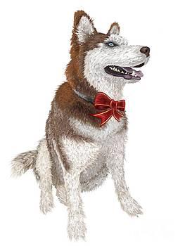 Morrow the Christmas Dog by Mark Teeter