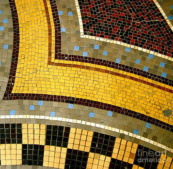 Carolyn Kami Loughlin - Mosaic Curves