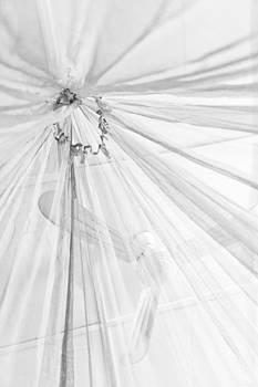 Nicole Neuefeind - Mosquito net