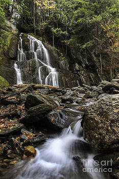 Expressive Landscapes Fine Art Photography by Thom - Moss Glen Falls