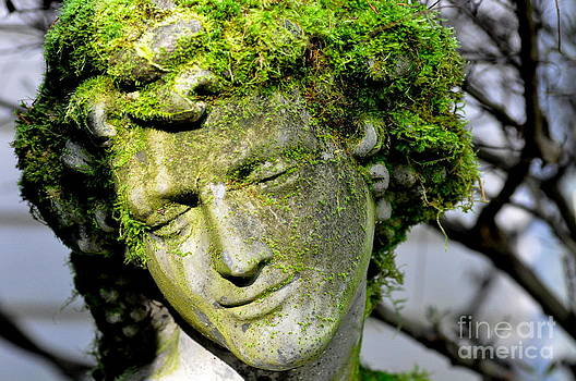 Mossy Bacchus Sculpture in Winter Sun by Tanya  Searcy