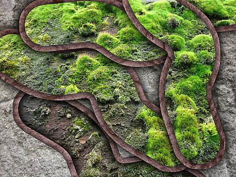 Mossy System by Florin Birjoveanu
