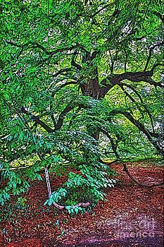 Mother Nature's Artwork by Judy Palkimas