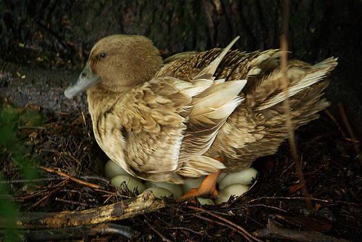 Motherhood by Lindy Whiton