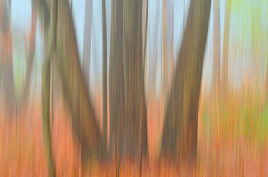 Motion Blur by Ben  Keys Jr