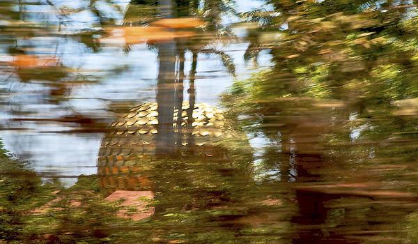 Kantilal Patel - Motion Blur Matrimandir at Auroville