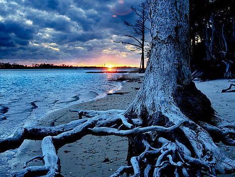 Motivational Landscape-Faith Hope Overcome-Tree Sunset by Eszra Tanner