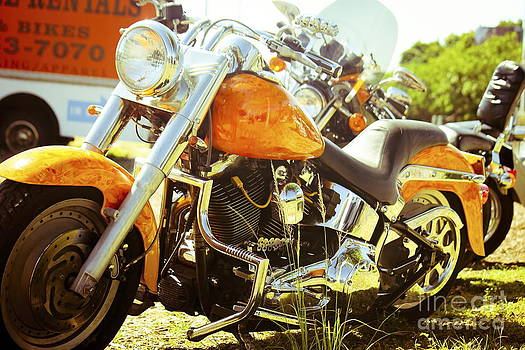 Sophie Vigneault - Motor Bikes