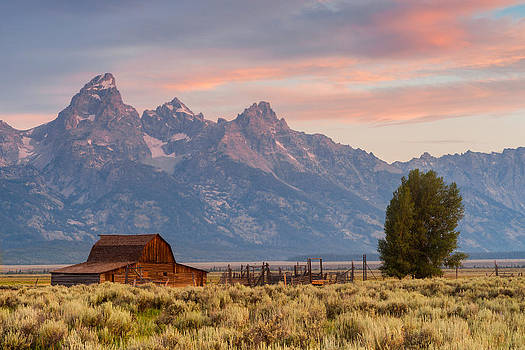 Moulton Barn - Grand Teton National Park by Mike  Walker