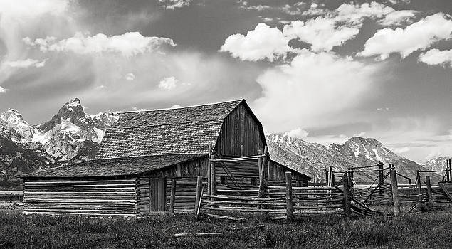 Moulton Barn in Black and White by Alina Marin-Bliach