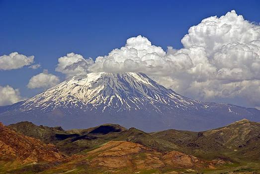 Dennis Cox - Mount Ararat