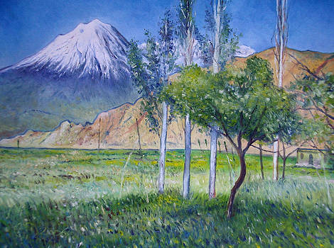 Mount Ararat North Eastern Anatolia Turkey by Enver Larney