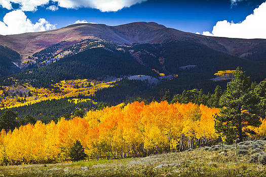 Mount Elbert Majesty by Evan Ludes
