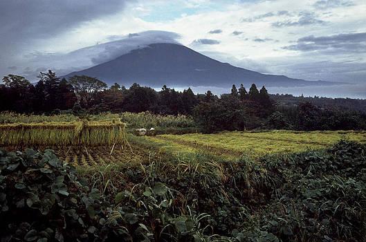 Mount Fuji Japan by John Wolf
