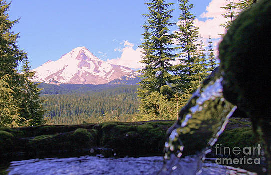 Mount Hood from Buzzard Point by Cari Gesch