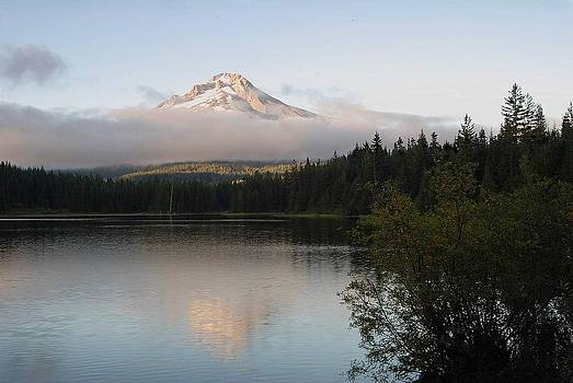 Shirley D Cross - Mount Hood from Trillium Lake