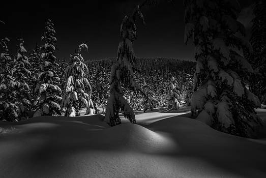 Mount Hood National Forest by Jean-Jacques Thebault