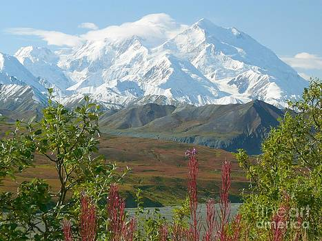 Christine Stack - Mount McKinley