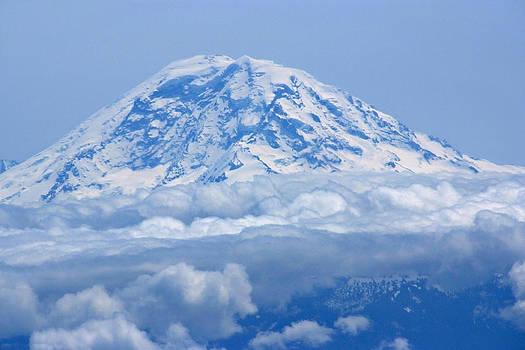 Devinder Sangha - Mount Rainier from Sky