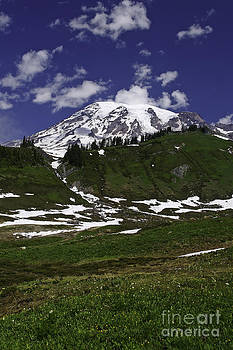 Tim Moore - Mount Rainier Sunshine