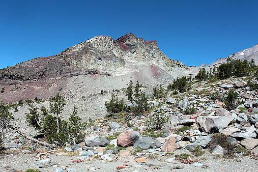 Mount Shasta by Daniela Safarikova