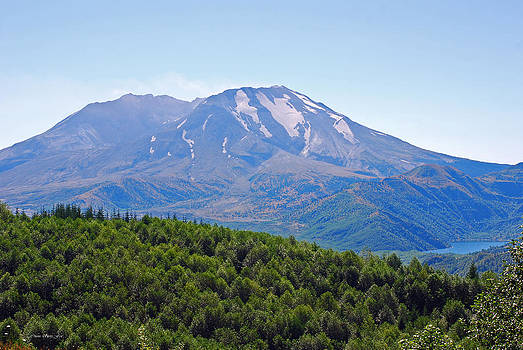 Connie Fox - Mount St. Helens and Castle Lake in August