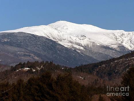 Christine Stack - Mount Washington With Snow in Early Spring