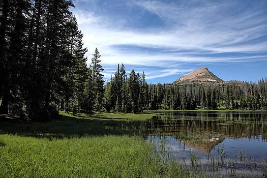 Mount Watson by Darryl Wilkinson