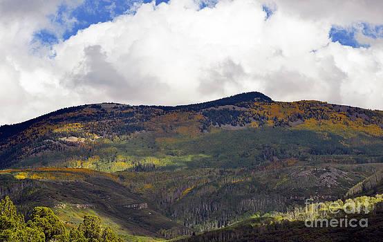Mountain Beauty  by Juls Adams