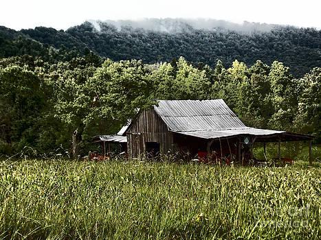 Mountain Cabin 2 by Annette Allman