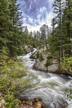 Mountain Cascades  by Garett Gabriel