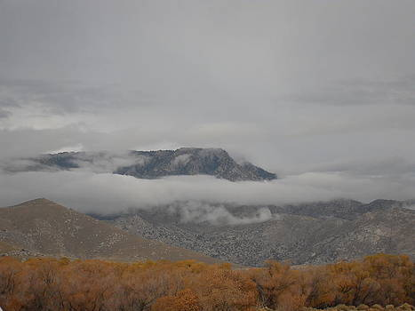Mountain Clouds Roll In by Laura Young