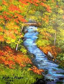 Mountain Creek by Barbara Pirkle
