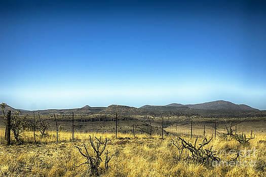 Mountain Fenceline by Jeremy Linot