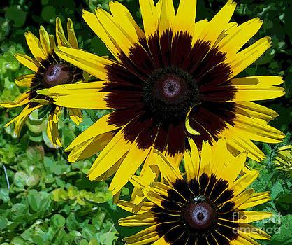 Mountain Flowers by Annette Allman
