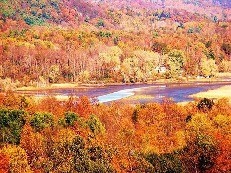 Mountain Foliage Series 010 by Van Ness