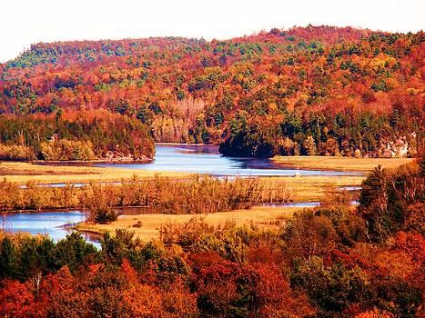 Mountain Foliage Series 029 by Van Ness