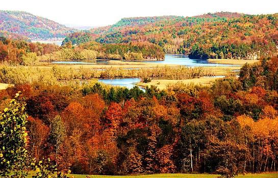 Mountain Foliage Series 033 by Van Ness