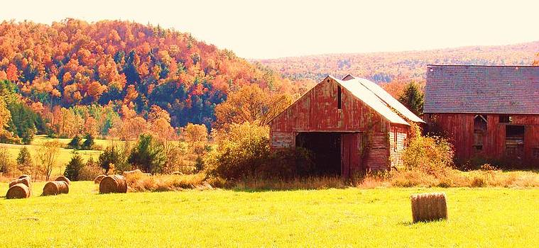 Mountain Foliage Series 062 by Van Ness