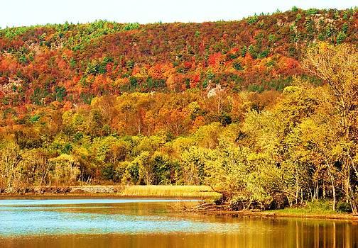 Mountain Foliage Series 067 by Van Ness