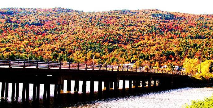 Mountain Foliage Series 071 by Van Ness