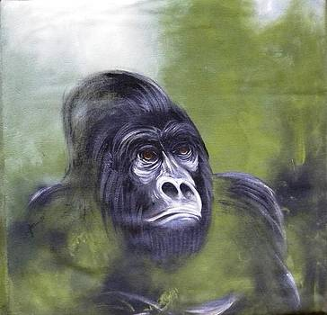 Mountain Gorilla by Jatter